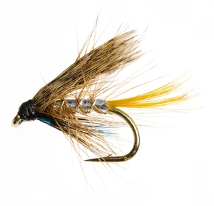 What Flies Should You Take With You – Beginners Guide to Catch More Trout