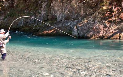 Dos and Donts of Fly Fishing – How to Catch More Trout!