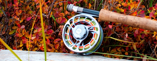 Which Fly Fishing Reels Are Best For Trout? Beginners Guide