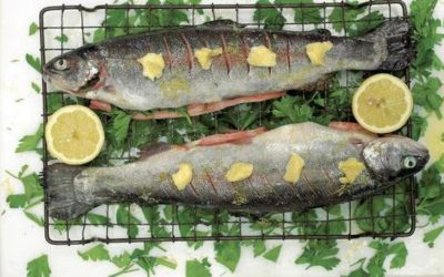 How to Cook Trout Fillets