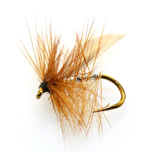 Best flies for brown trout - silver sedge