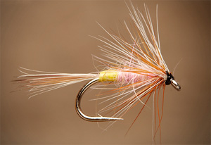 Best flies for brown trout - tups_indispensable