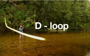 Roll cast fly fishing d loop