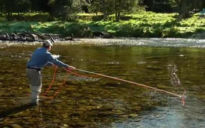 Reach Mend Fly Casting