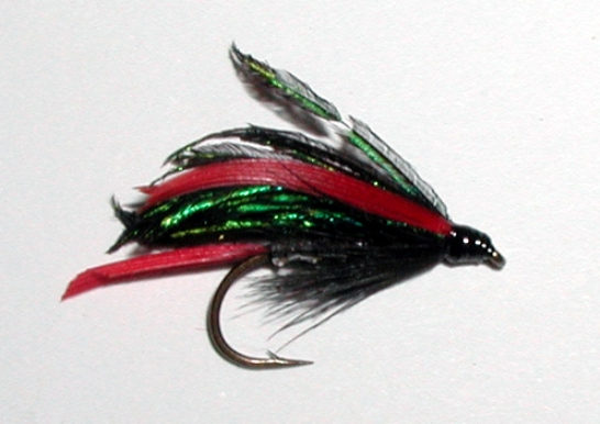 Alexandra wet trout fly pattern
