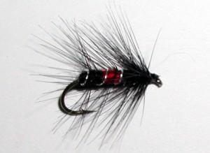 Bibio wet trout fly pattern