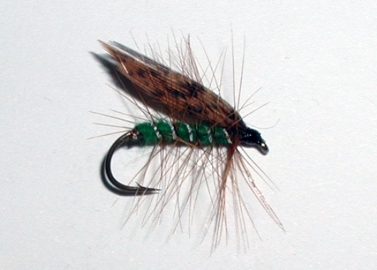 Green Peter wet trout fly pattern