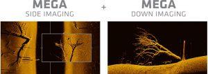 side imaging vs down imaging