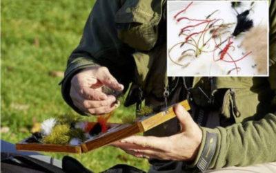 Stillwater Trout Fly Fishing in Winter – a Few Tips