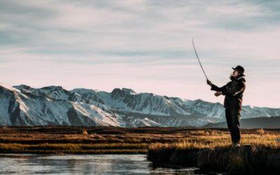 12 Best Flies for Winter Stillwater Fly Fishing