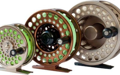 Best Fly Fishing Reels 2020 – Buying Guide and Reviews