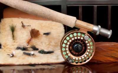 Best Fly Fishing Rods 2021 – Comparison and Beginners Guide