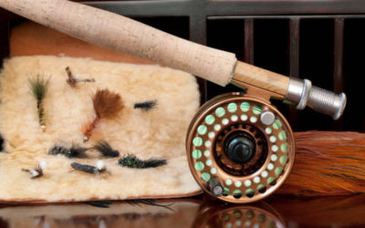 Best Fly Fishing Rods 2019 – Comparison and Beginners Guide