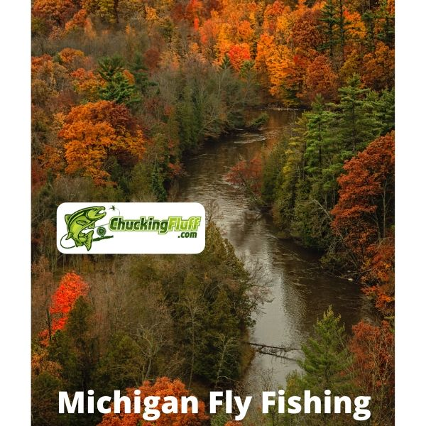 Best Fly Fishing in Michigan State