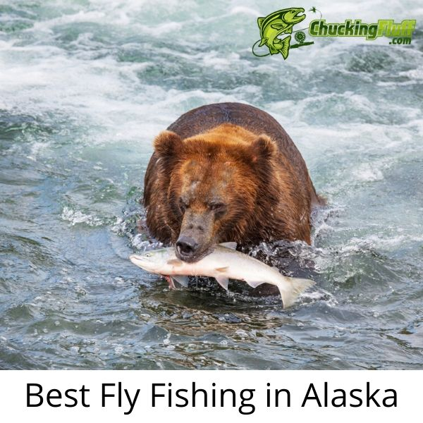 Best Fly Fishing in Alaska