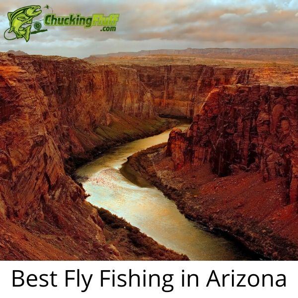 Best Fly Fishing in Arizona