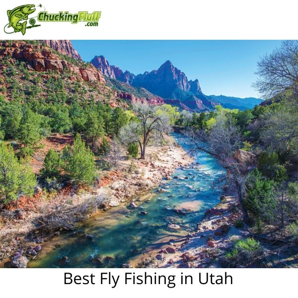 Best Fly Fishing in Utah