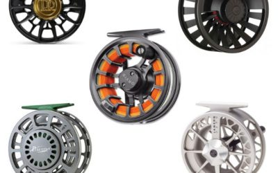 Best Saltwater Fly Reel for the Money 2021 – Value for your Buck