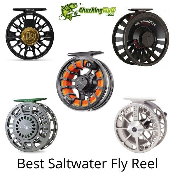 Best Saltwater Fly Fishing Reel