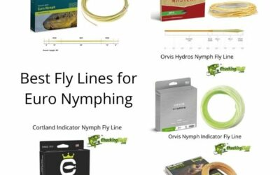 Best Fly Lines for Euro-Nymphing 2021- Getting Down to the Action