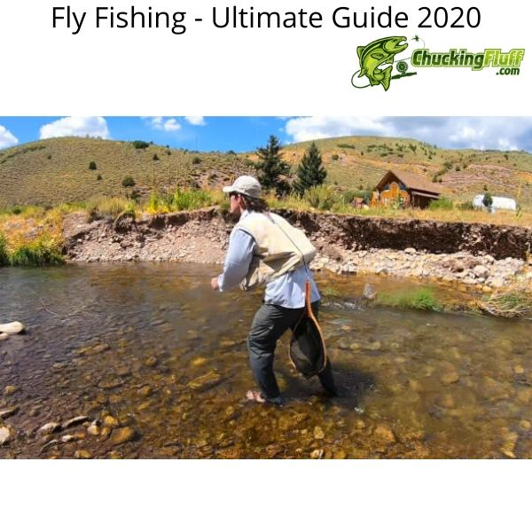 Ultimate Guide 2020 Dry Fly