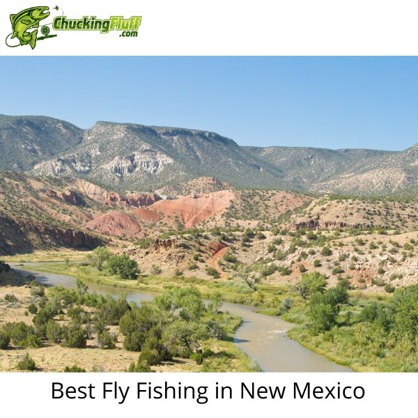 Best Fly Fishing in New Mexico