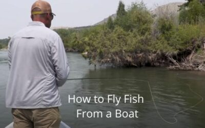 How to Fly Fish from a Boat – Tips for a Newbie.