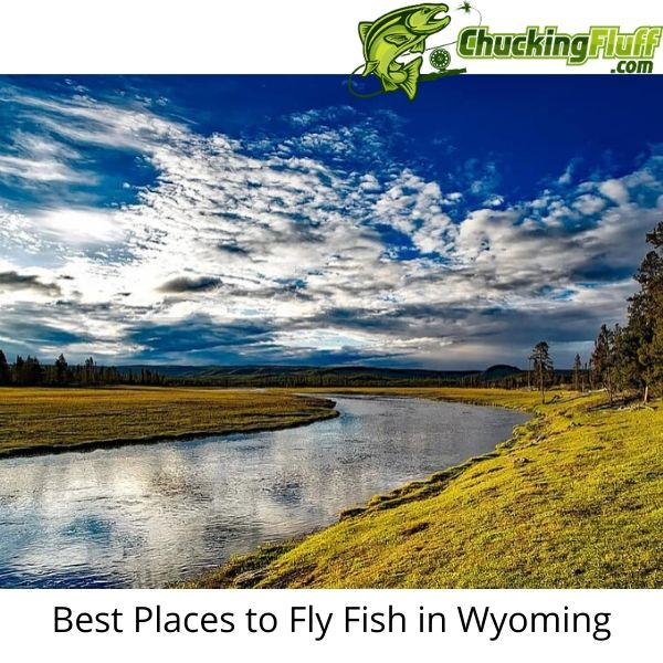 Best Places to Fly Fish in Wyoming