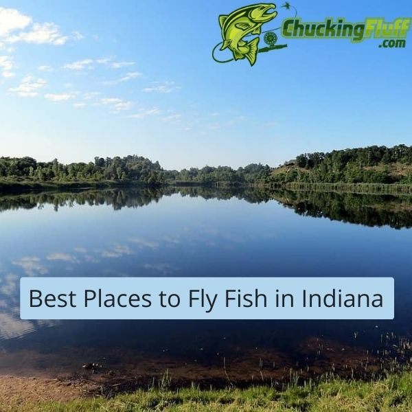 Best Places to Fly Fish in Indiana