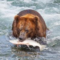 Alaska fly fishing destinations