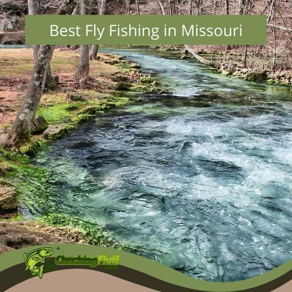 Best Fly Fishing in Missouri